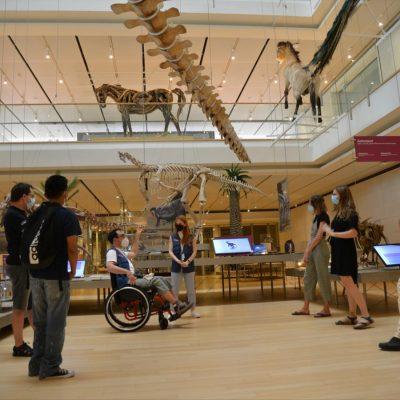 MUSE – Visite in tandem alla scoperta degli animali del Big Void